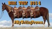 horse tour bus 1