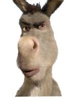 mad donkey 2