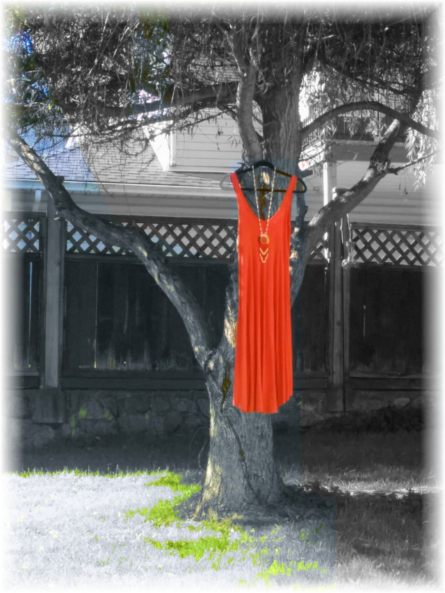Red Dress Project 3