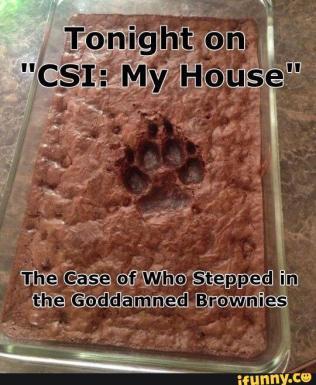 CSI case