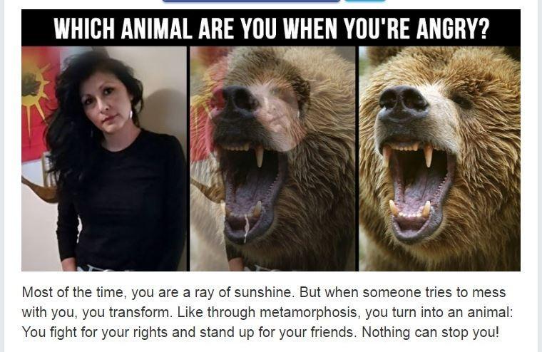 Angry animal mine