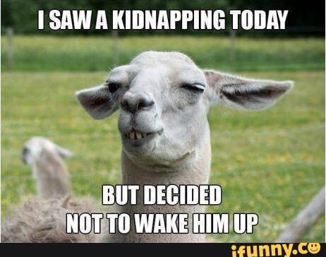 goat kid naps